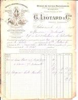 Liotard & Cie. Huiles à Graisser & Lampantes. Savons Cafés. Spécialité D'huiles D'Olives. Salon. 1908. - France