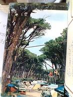 2 CARD VADA LIVORNO CAMPING  TIRRENO  VB1980  GW4954 - Livorno