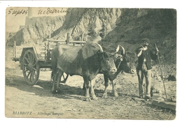 64 BIARRITZ ATTELAGE BOEUFS BASQUE METIER AGRICULTURE TYPE PYRENEES ATLANTIQUES - Biarritz