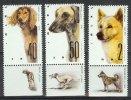 Mmg097 FAUNA HONDEN SALUKI SLOUGHI CANAAN DOGS HUNDE CHIENS PERROS ISRAËL 1987 PF/MNH - Honden