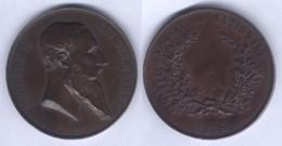Médaille De Léopold II - Exposition Nationale 1880 - - Royaux / De Noblesse