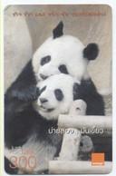 Panda Ours Bear Carte Prépayée Thaïlande Card Card (D 350) - Thaïlande