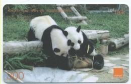 Panda Ours Bear Carte Prépayée Thaïlande Card Card (D 351) - Thaïlande