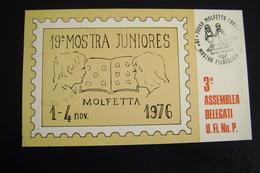 1976  19°    MOLFETTA  FDC MOSTRA FILATELICA FIRST DAY PREMIER JOUR MAXIMUM - Francobolli (rappresentazioni)