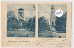 CPA ( Précurseur)  -36404-67- Weissenburfg ( Wissembourg) - Scherholtthurm  ( Multivues Alt Und Neu) - Wissembourg