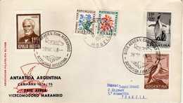 Antarctic / Antarctiques. Argentina Letter 1974 Via France 1975 - Motive Stamp - Penguins,birds.( 2 Scans ) - Argentina