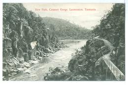 Vintage Tasmania, Launceston New Path Cataract Gorge Pc Unused - Lauceston