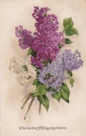 AL86 Greetings - Pfingstgrusse, Flowers - Pentecôte