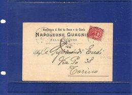 """##(DAN1810)-1898- Cartolina Intestata""""Manifattura Di Reti Da Caccia E Da Pesca-Napoleone Guagnino-Celle Ligure"""" - Marcofilía"""