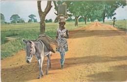 Bs - Cpsm HAUTE VOLTA - Une Femme S'en Va Au Marché, Heureuse D'y Retrouver Ses Amies (ane) - Burkina Faso