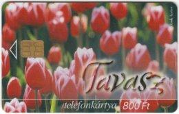 HUNGARY E-242 Chip Matav - Plant, Flower, Tulip - Used - Hungary