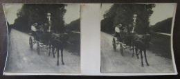 Photo Stéréoscopique - Scène De Vie, Famille, Calèche, Animée - Vers 1900 - Photos Stéréoscopiques