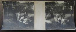 Photo Stéréoscopique - Scène De Vie, Famille, Enfants, Jardin, Animée - Vers 1900 - Photos Stéréoscopiques