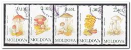 Moldavië 1996, Gestempeld USED, Mushrooms - Moldavië