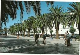 PLAZA  DE  ESPANA  OLIVENZA  [BADAJOZ] - Badajoz