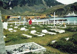 1 AK South Georgia Island * Antarctica * Friedhof Mit Dem Grab Von Sir Ernest Shackleton In Grytviken * - Postcards