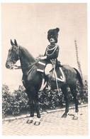 CPA :  Gendarmerie Belge  - Fête Militaire Du Centenaire - Officier - Gendarme à Cheval (1914) Photo Frémault - Characters