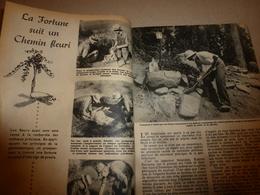 1948 MÉCANIQUE POPULAIRE:Géobotanique Pour Trouver De L'or;Médecin De Poupée;Jardin Sauvage;Faire Un Cruiser-moteur;etc - Sciences & Technique