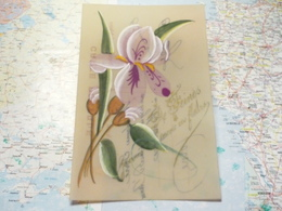 Feings / De Feings Je Vous Envoie Ces Fleurs : Carte Celluloïd Peinte à La Main - France