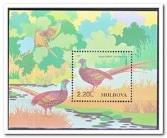 Moldavië 1996, Postfris MNH, Birds - Moldavië