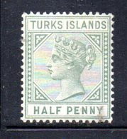 1062 490 - TURKS E CAICOS 1882 , Yvert N. 21  *  Fil CA - Turks & Caicos (I. Turques Et Caïques)