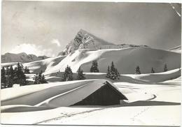 W253 Vipiteno Sterzing (Bolzano) - Passo Del Giovo Jaufenpass - Panorama Invernale / Viaggiata 1965 - Vipiteno