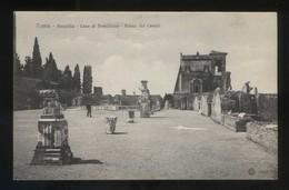 Italia. Lazio. Roma. *Peristilio. Casa Di Domiziano...* Ed. Brunner & C. Nº 6063. Nueva. - Roma (Rome)
