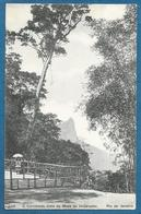 BRASIL RIO DE JANEIRO O CORCOVADO VISTO DA MEZA DO IMPERADOR - Rio De Janeiro