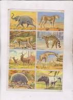 PLANCHE DE 16 FIGURINES D ANIMAUX DESSINES - Figurines