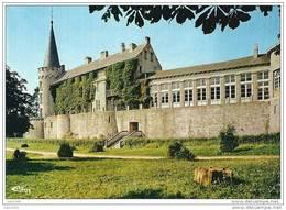 FLORENNES ..-- Le Château Des Ducs . - Florennes
