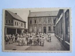 Boom Bosstraat Aanneembare Meisjesschool Gouden Jubileum 1955 Foto Mertenss Zoon Zellik - Boom