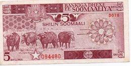 SOMALIA-5 Shilin Soomaali/Somali Shillings 1987  P-31 AUNC - Somalia
