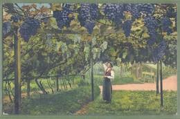 CPA - ITALIE - BOLZANO (BOZEN) - WEINGARTEN - Animata, Vines, Vino - éditori Joh. F. Hamonn / M 11550 N - Bolzano (Bozen)