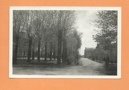 Carte  -  Coulonges Sur L'Autize (Deux Sèvres ) - Avenue De La Gare - Coulonges-sur-l'Autize