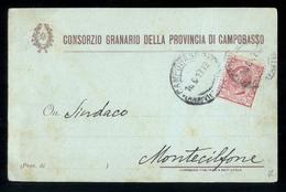 CAMPOBASSO - 1917 - CARTOLINA DEL CONSORZIO AGRARIO - Culture