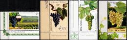 "Moldova 2013 ""Wine Grape Varieties Of Moldova"" 4v Quality:100% - Moldavia"