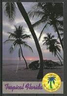 USA Ansichtskarte Tropical FLORIDA Sunset Sent 1998 With Stamp - Etats-Unis