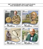 Maldives 2018   Max Planck Theoretical Physics  S201809 - Maldives (1965-...)
