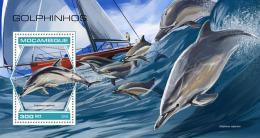 Mozambique 2018  Dolphins  S201809 - Mozambique