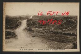 56 ILE DE GROIX - A Travers La Lande Et Les Ajoncs En Fleurs - France
