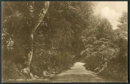 Lyndhurst - New Forest Road - England
