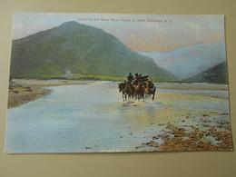 NOUVELLE ZELANDE CROSSING THE REES RIVER HEAD OF LAKE WAKATIPU - Nouvelle-Zélande