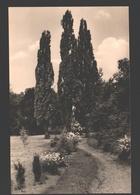 Rossla / Harz - Im Park - Verlag Erhard Neubert - Stolberg (Harz)