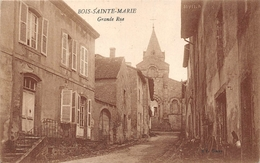 Bois Sainte Ste Marie Canton La Clayette - France