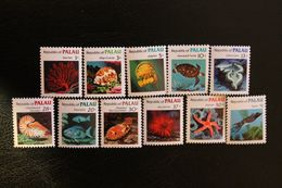 Palau. Fauna. Marine Fauna - Marine Life