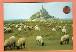 * * LE MONT SAINT-MICHEL * * Les Moutons De Pré Salé - Le Mont Saint Michel