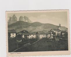 SAGRON Di PRIMIERO (TN) - F.G. - Anni '1940 - Trento