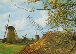 Hollandse Molens  [AA11-037) - Pays-Bas