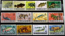 Belice 302/13 ** - Belice (1973-...)