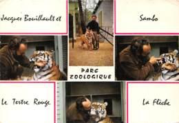 PARC ZOOLOGIQUE DU TERTRE ROUGE SAMBO Tigre Royal D Asie 30(scan Recto-verso) MA2022 - France